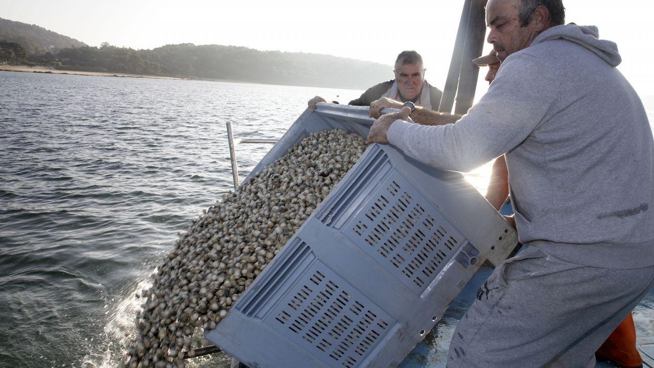 la cofradia de pescadores de noia (2)